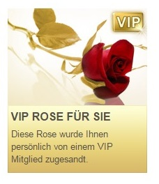 Eine digitale VIP-Rose. © Elitepartner